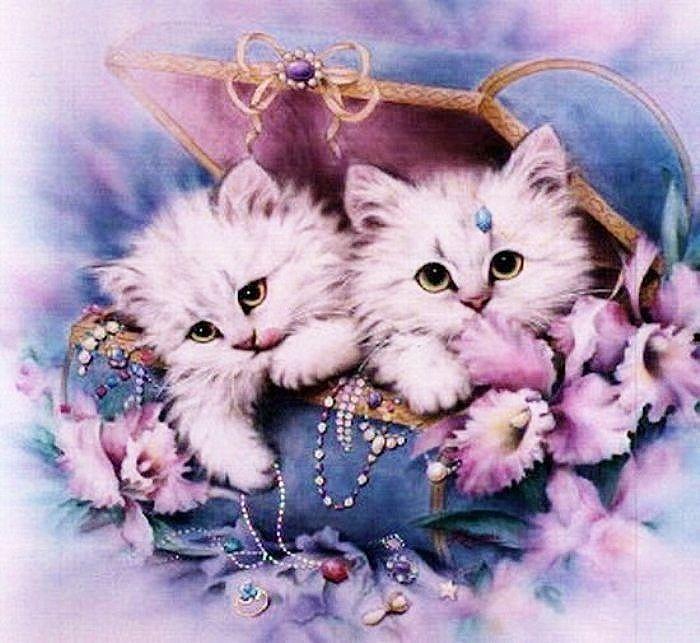 Рождением сына, открытки анимационные коты