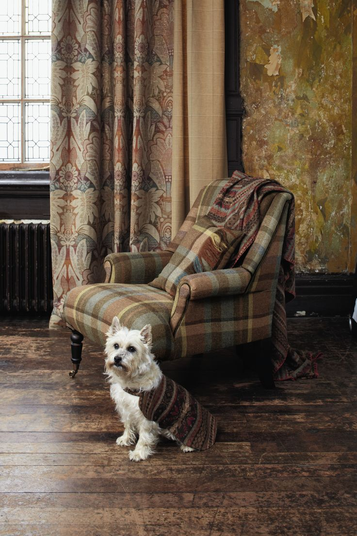In Scottish Interior Life, journalist Heather MacLeod looks at interiors in…