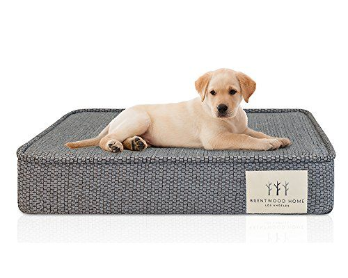Special Offers - Brentwood Home Gel Memory Foam Orthopedic Pet Bed Large 46 by 29 Blue Fog - In stock & Free Shipping. You can save more money! Check It (June 26 2016 at 05:04PM) >> http://doghousesusa.net/brentwood-home-gel-memory-foam-orthopedic-pet-bed-large-46-by-29-blue-fog/