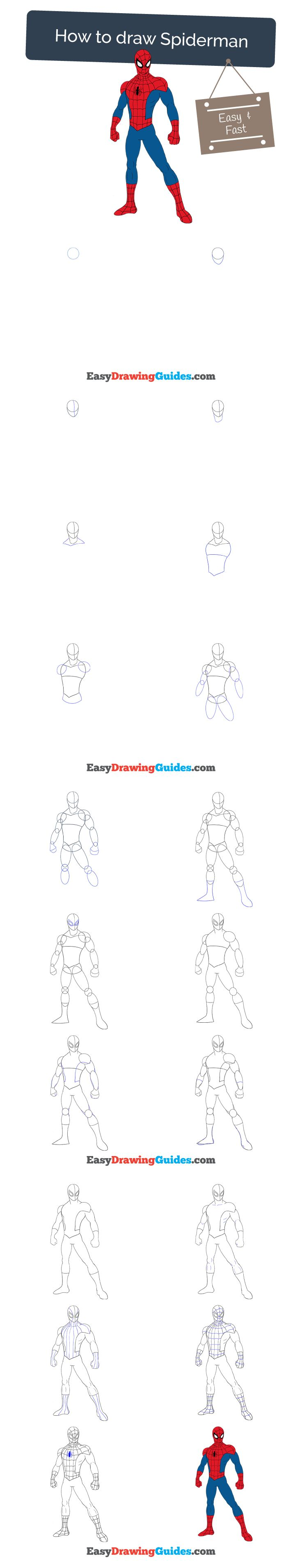 Learn How to Draw Spiderman: Easy Step-by-Step Drawing Tutorial for Kids and Beginners. #spiderman #drawing. See the full tutorial at https://easydrawingguides.com/how-to-draw-spiderman/