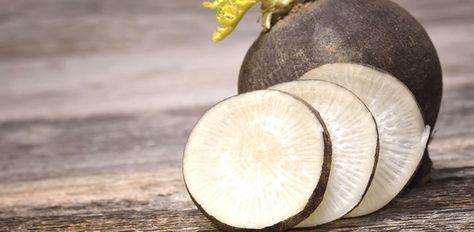 Aliment par excellence de la cure detox, le radis noir favorise l'élimination des toxines dues à une alimentation plus riche. Il va vous aider à mieux digérer et a des vertus antibactériennes reconnues. De plus, c'est un réel allié du foie qu'il va aider à drainer. A consommer cru, en rondelles avec un peu de sel ou en salade râpé. Les plus téméraires pourront tester le jus de radis noir raison d'un verre par jour. Téméraires on a dit !