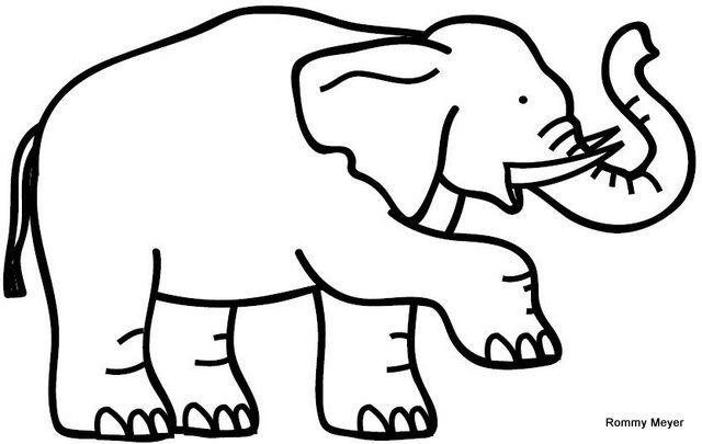 Perfil De Elefante Trompa Dibujo Buscar Con Google Con Imagenes