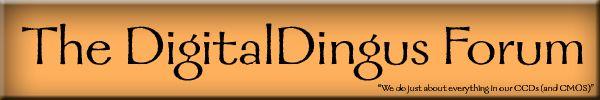 All Digital Camera Page: DSLR, Nikon D100, D200, D70, D50, Nikon D70,Custom Curves, Curve, D100 Eyecup, Digital DSLR, 990, Photoshop, tips, ...