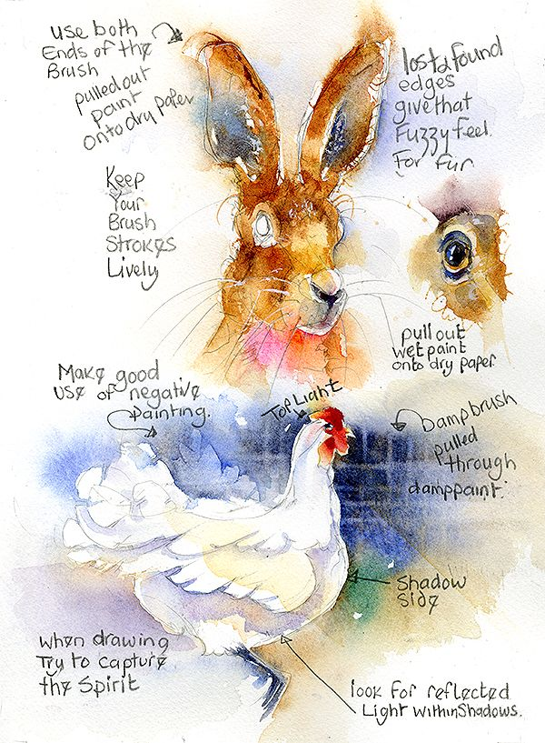 1950 best Watercolor Painting images on Pinterest
