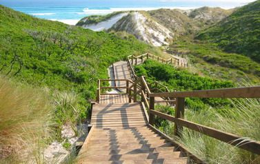 Valley of the Giants, Denmark, Western Australia - Steps and a boardwalk provide easy access to the magnificent beach, ideal for beachcombing or surfing for the more energetic.  From the lookout, whales can be seen between May and October.