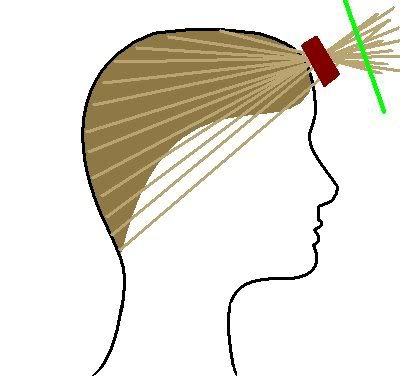 Detailed instructions on how to cut hair with layers. The closer the ponytail to the forehead the more dramatic the layers