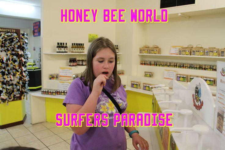Honey Bee World ☆ Surfers Paradise ☆ Queensland Australia ☆ #honeybee #goldcoast #surfersparadise #queensland #australia #honey