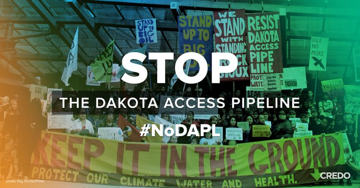 The First Amendment is under attack along the Dakota Access pipeline route in North Dakota. Police are attacking nonviolent Native American protestors and jailing journalists for filming the injustices. We must speak out to stop it.