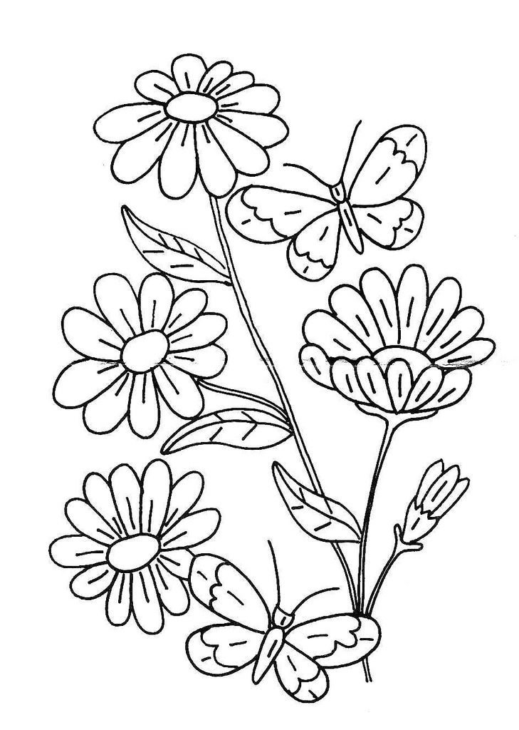Basic Flower Line Drawing : Best images about pyrography patterns on pinterest