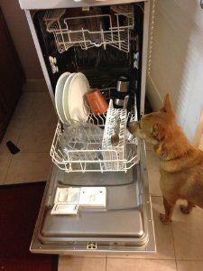 Awesome Amazon.com: Danby DDW1899WP 8 Place Setting Portable Dishwasher   White:  Appliances