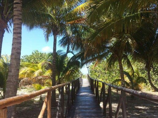 Bridge to playa!