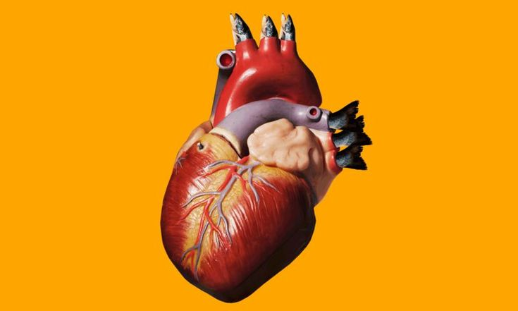 Fish oil might not help our heart like we once thought. Alice Callahan reviews the research.