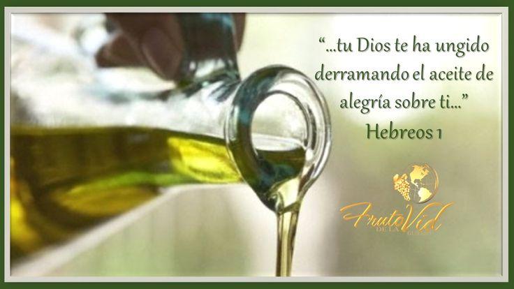 """Lunes, 26 de junio de 2017 """"…tu Dios te ha ungido derramando el aceite de alegría sobre ti…"""" Hebreos 1.    Hebreos 1Reina-Valera 1960 (RVR1960) Dios ha hablado por su Hijo 1 Dios, habiendo hablado muchas veces y de muchas maneras en otro tiempo a los padres por los profetas,   ##devocional ##devocionales #Valera 1960 (RVR1960)"""