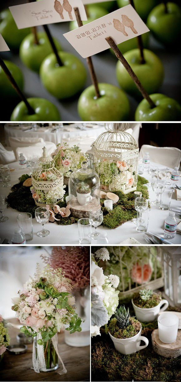 Like movie The Wizard of OZ:  forest style wedding