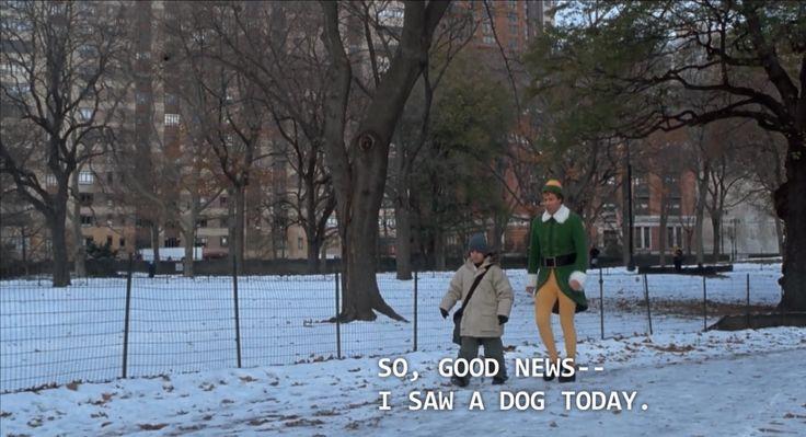 So, good news-- I saw a dog today.//Elf