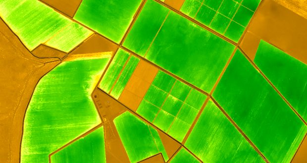 NDVI in agriculture