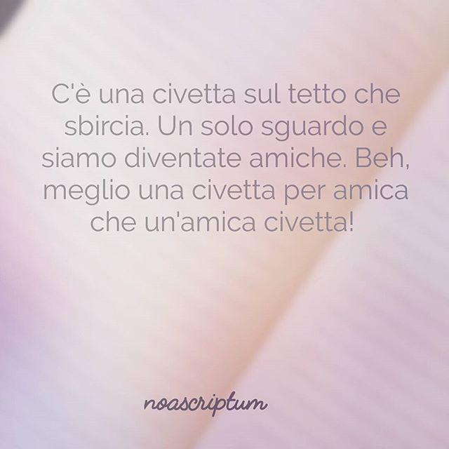 Caro Diario - #noascriptum_carodiario #carodiario #iomicito #poesia #frasi #pensierieparole #riflessioni #aforismi #arte #civetta #amica #sguardi