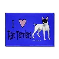 I love Rat Terriers magnet