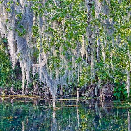 Nature S Sunshine Water Purification System