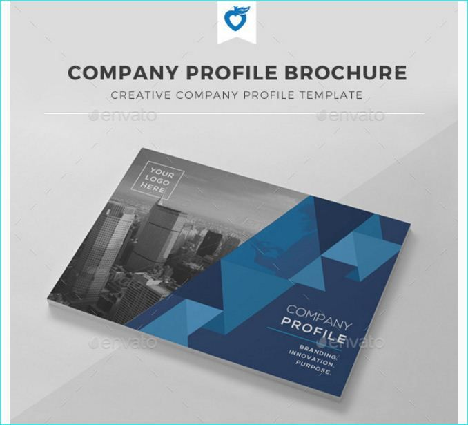 16 best 15 Best InDesign Brochure Templates For Creative Business - company profile free template