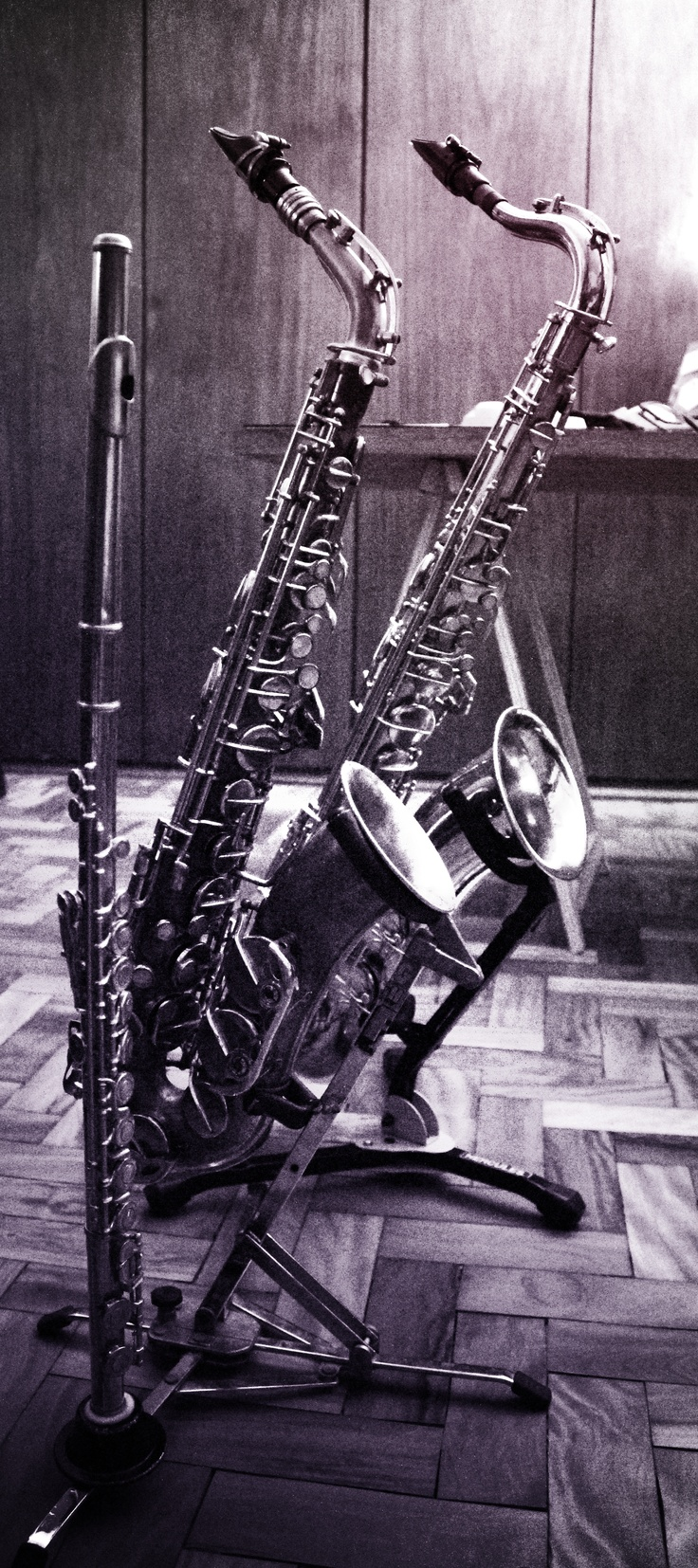 "Meus filhos:  Japanese Flute - Yamaha yfl225n 90""  Czech Alto Sax - Toneking Amati Kraslice 1945  Brazilian Tenor Sax - Weril 30"""