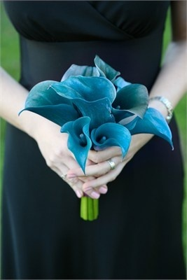 Blue is a perfect color for a wedding theme. Not only does it work well as a something blue but it also looks beautiful with a white or black backdrop - or dress. Blue comes in a number of different shades and works well during a spring or summer wedding.