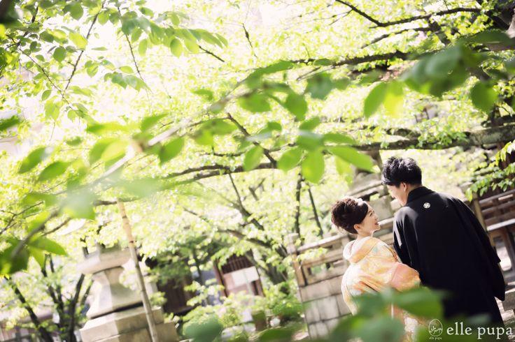 新緑の桜の木の下で*和装前撮り |*elle pupa blog*
