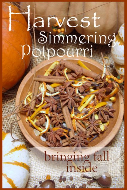 HARVEST SIMMERING POTPOURRI Easy to make with what you have in your kitchen! Smells like fall! stonegableblog.com