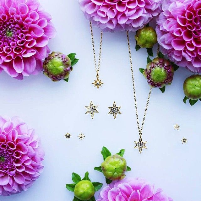 a selection of hvisk stars jewelry