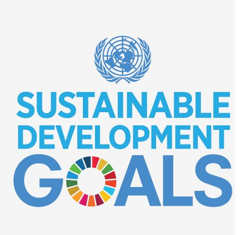 Sustainable development goals #GlobalGoals #GlobalCitizen