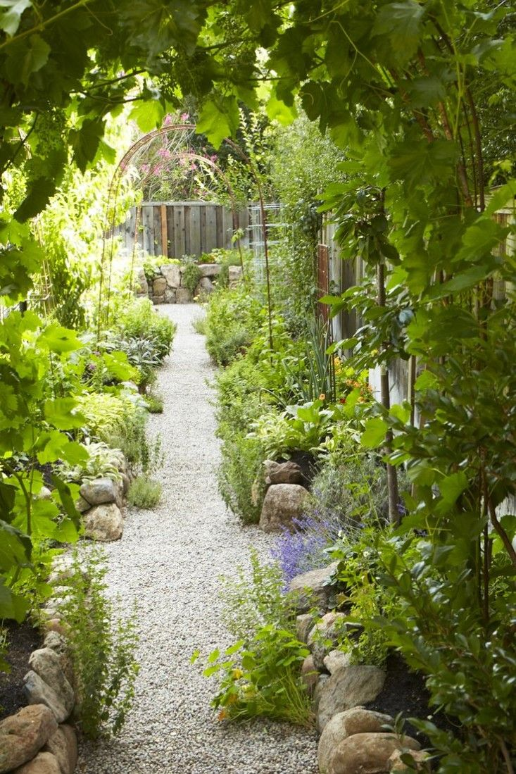 Beautiful Edible Kitchen Garden w arched metal supports for beans, grapes….