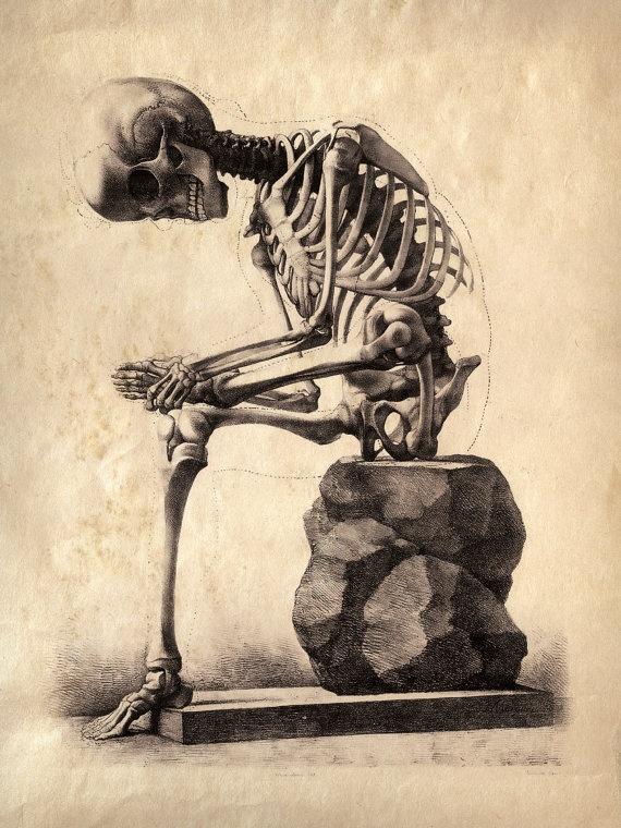 Vintage anatomy print $30