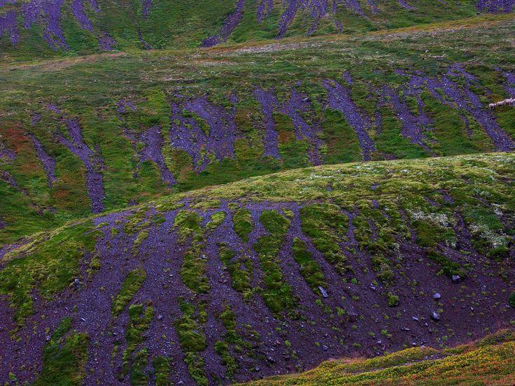 Quello che colpisce in Islanda sono i colori... improbabili e dai contrasti assolutamente strabilianti