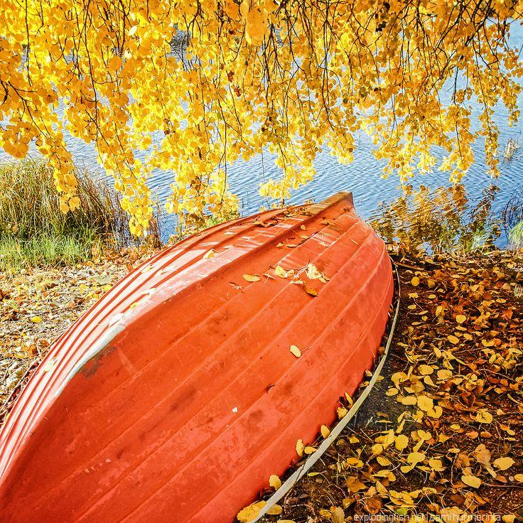 A boat covered with autumn leaves. Lake Palokkajärvi, Jyväskylä - Copyright Sami Hurmerinta / Explodingfish.net. All Rights Reserved. #jyvaskyla #finland #autumn #autumnleaves #fall #lake #landscapephotography
