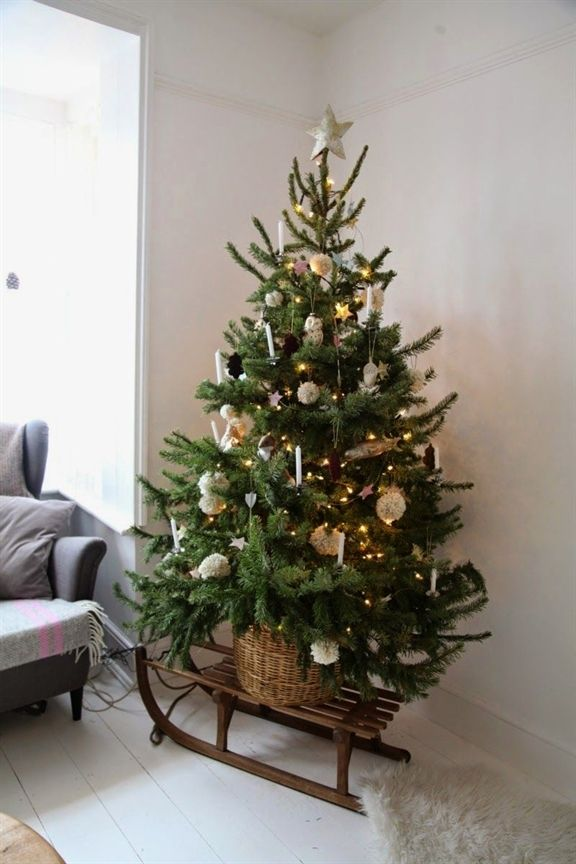 Now that Christmas is in full swing it\u0027s time to get those trees up