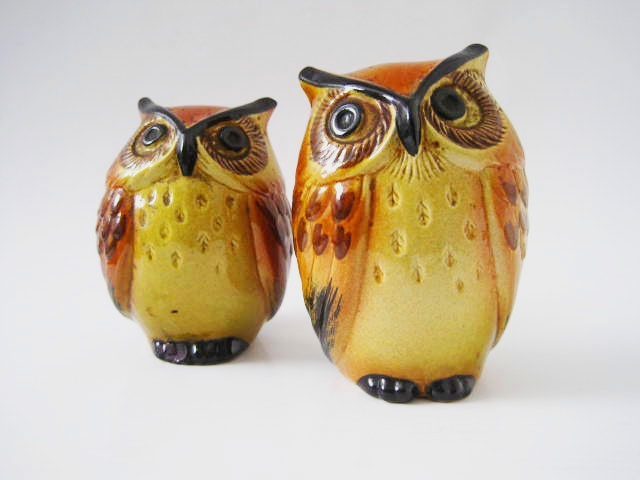 1000 images about salt pepper shakers on pinterest salts glitter and argyle sweaters - Owl salt and pepper grinders ...