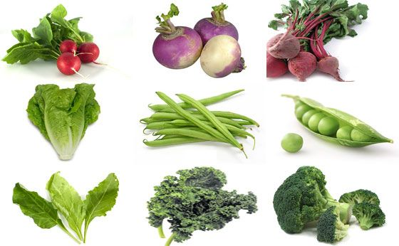 A list of vegetables that will grow quickly in your garden and put food on the table quickly.