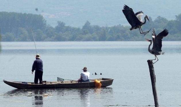 Blic Online   Fotografije godine kompanije Ringier