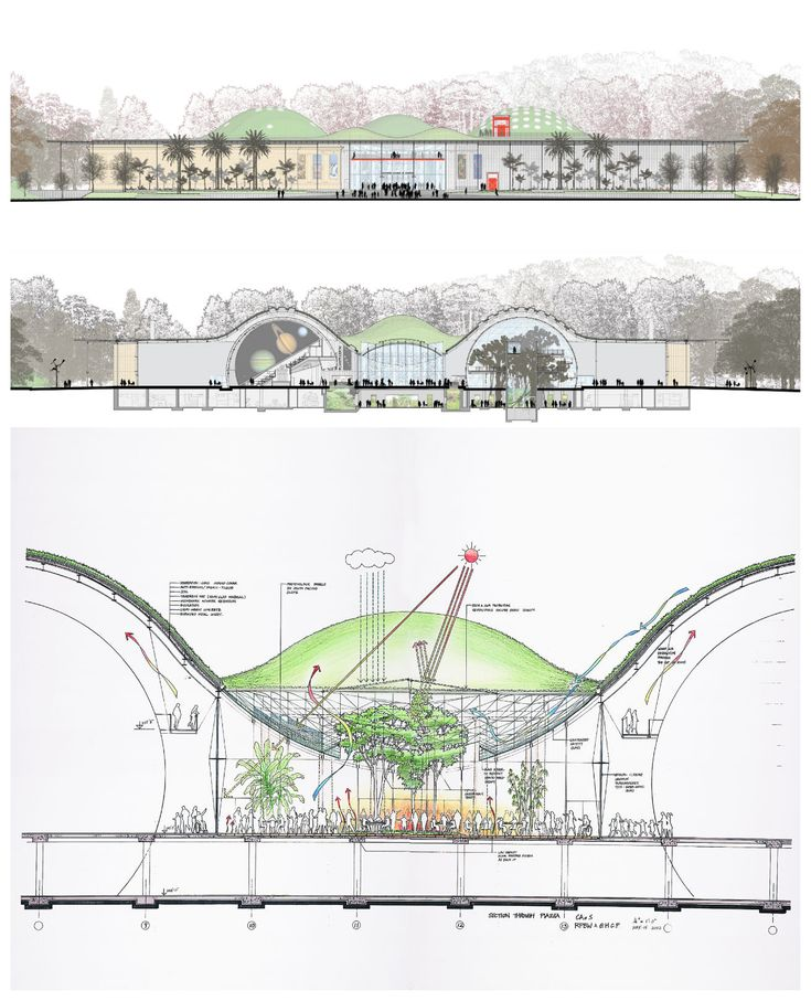 California Academy of Sciences by Renzo Piano / Drawings and Sketches