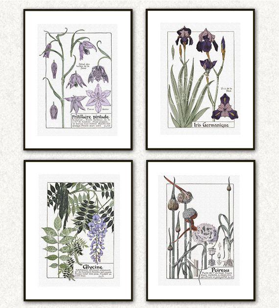 Art Nouveau Botany Plates French Flower Flora by PrintGallerySets