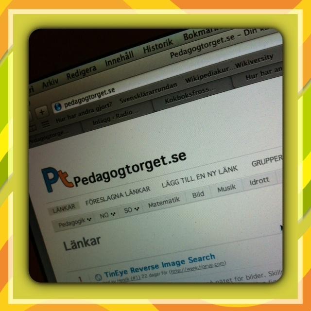 www.pedagogtorget.se