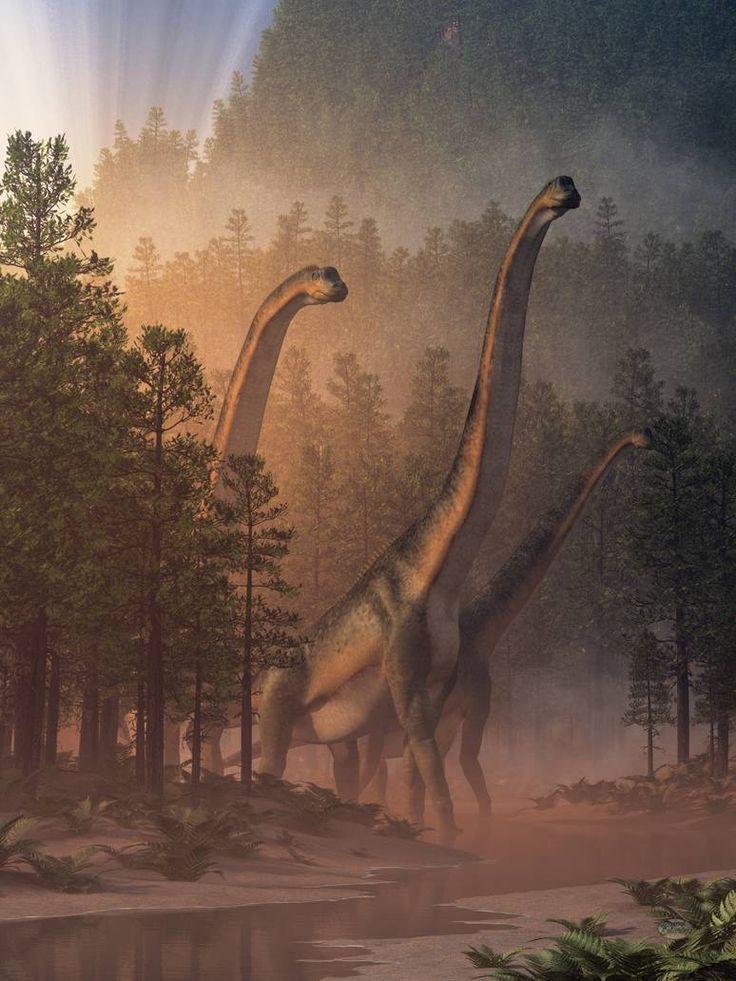 Brachiosaurus valley by deskridge brachiosaurus