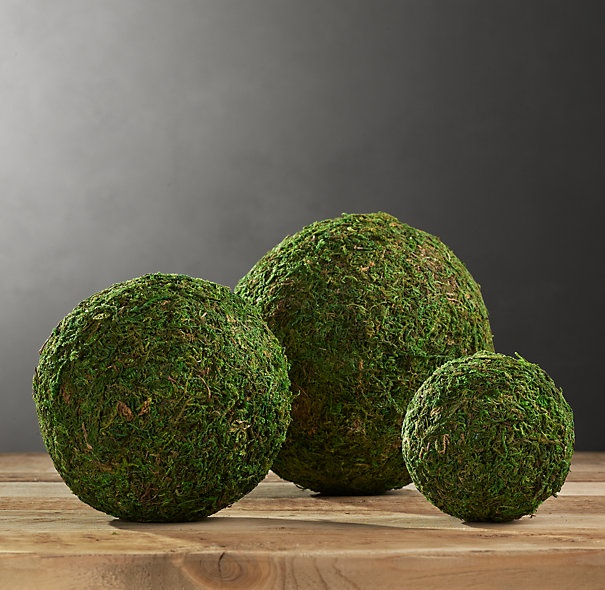 Decorative Moss Balls Interesting 30 Best Diy Moss Balls & Topiaries Images On Pinterest  Bricolage Design Ideas