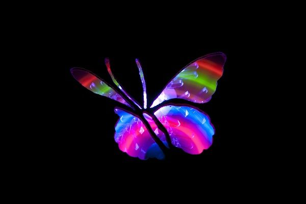 painting with light photography | Light_Painted_Butterfly