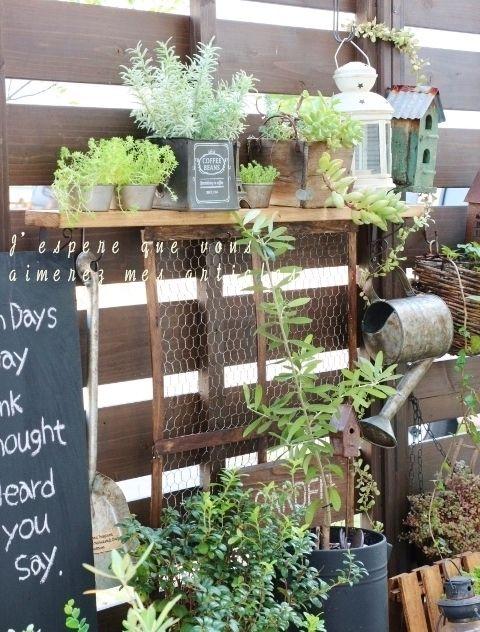 ●セリアの調理グッズで、お庭を飾る*&ひとめ惚れしたものと、グリーンなお話● の画像 ・:*:ナチュラルアンティーク雑貨&家具のお部屋・:*