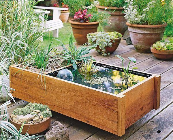 bassin de jardin avec un mini jardin à côté et belles plantes