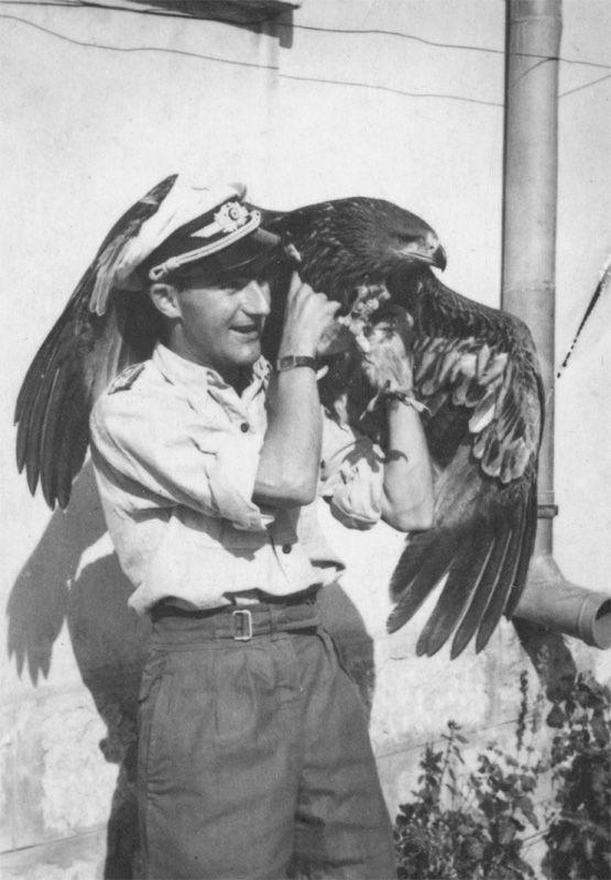 Luftwaffe pilot mit einen Krieg Vogel, pin by Paolo Marzioli