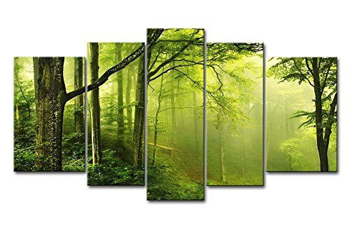 Green+5+Panel+Wall+Art+Painting+Enchanted+Green+Forest+With+Fog+Pictures+Prints+On+Canvas+Landscape+The+Picture+Decor+Oil+For+Home+Modern+Decoration+Print+So+Crazy+Art+http://www.amazon.ca/dp/B00R6XHRDC/ref=cm_sw_r_pi_dp_tn2xwb1RB1C9X