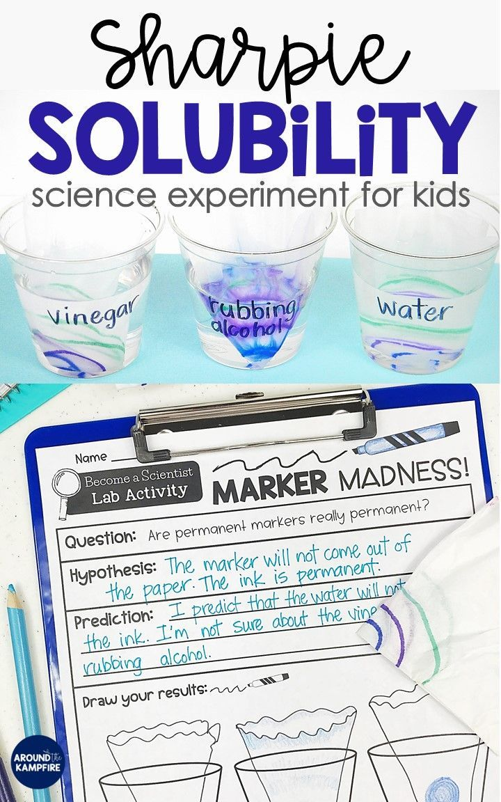Sharpie Solubility Experiment For Kids 5th Grade Science