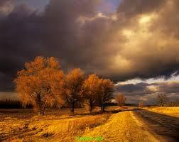 Stormy Autumn